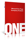 Plimsoll Single Company Analysis